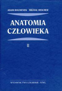 Anatomia czlowieka t.2