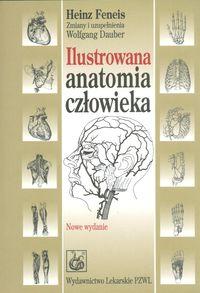 Ilustrowana anatomia człowieka