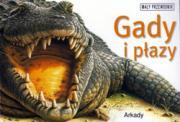 GADY I P�AZY /Ma�y przewodnik