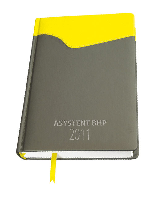 Asystent BHP 2011