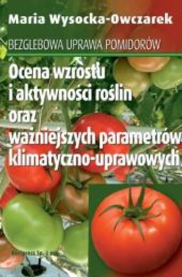 Bezglebowa uprawa pomidorów