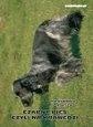 Czarny pies czyli na krawędzi